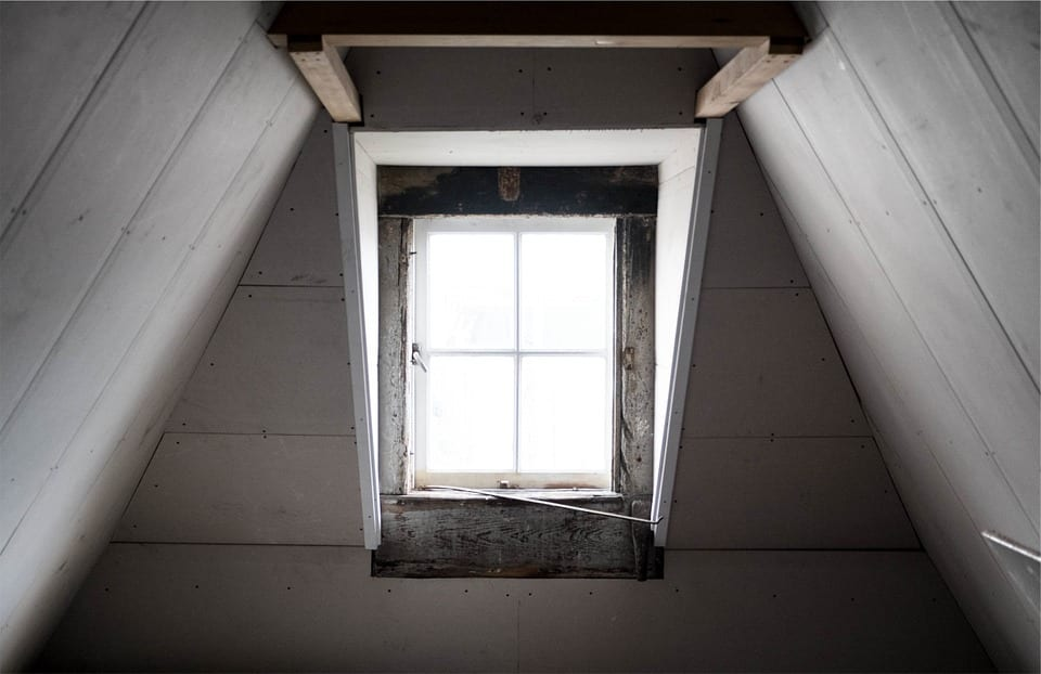 pests often look for warm secluded areas like attics to make their home