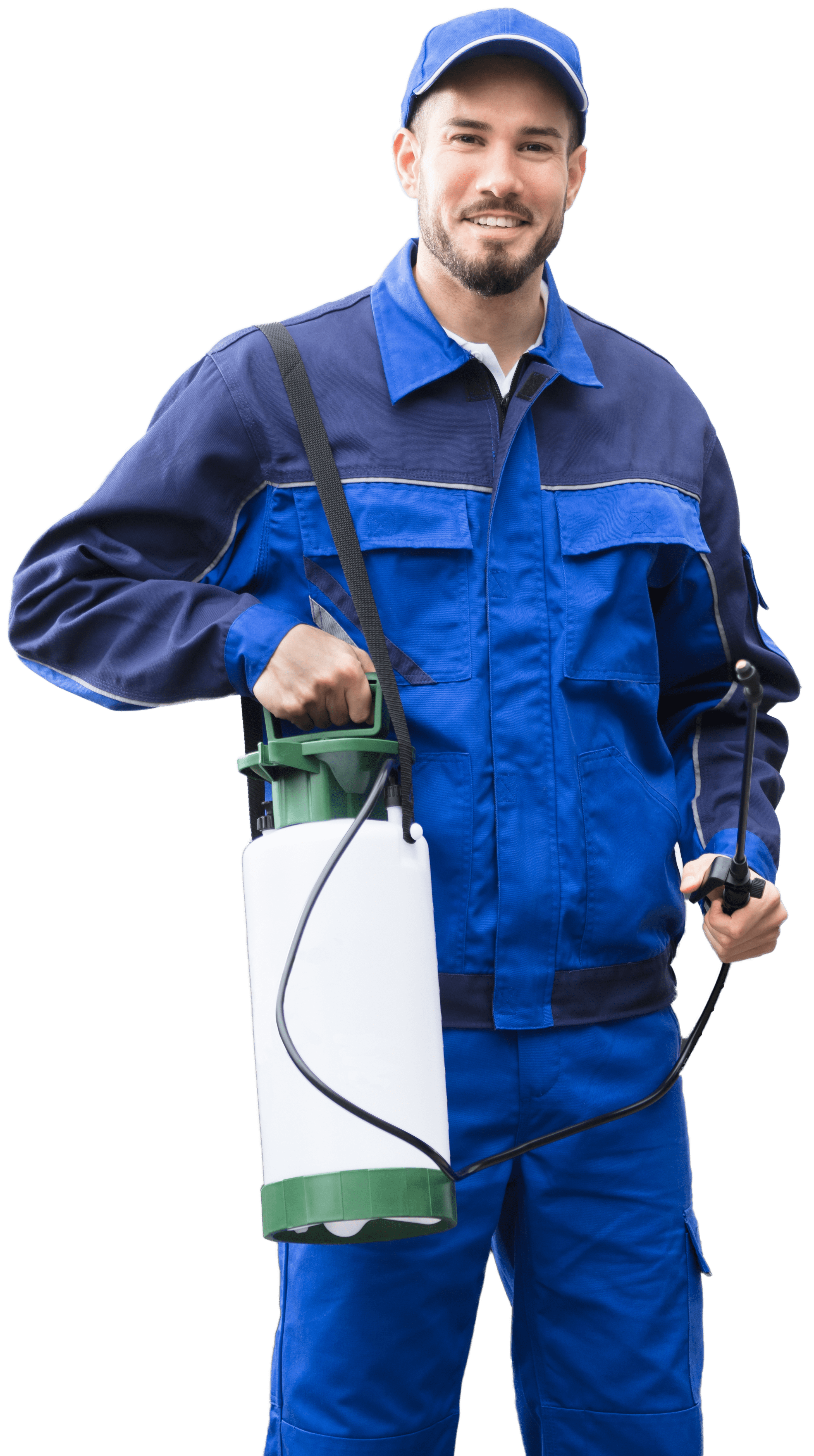 expert extermination services by aaa exterminating indianapolis indiana