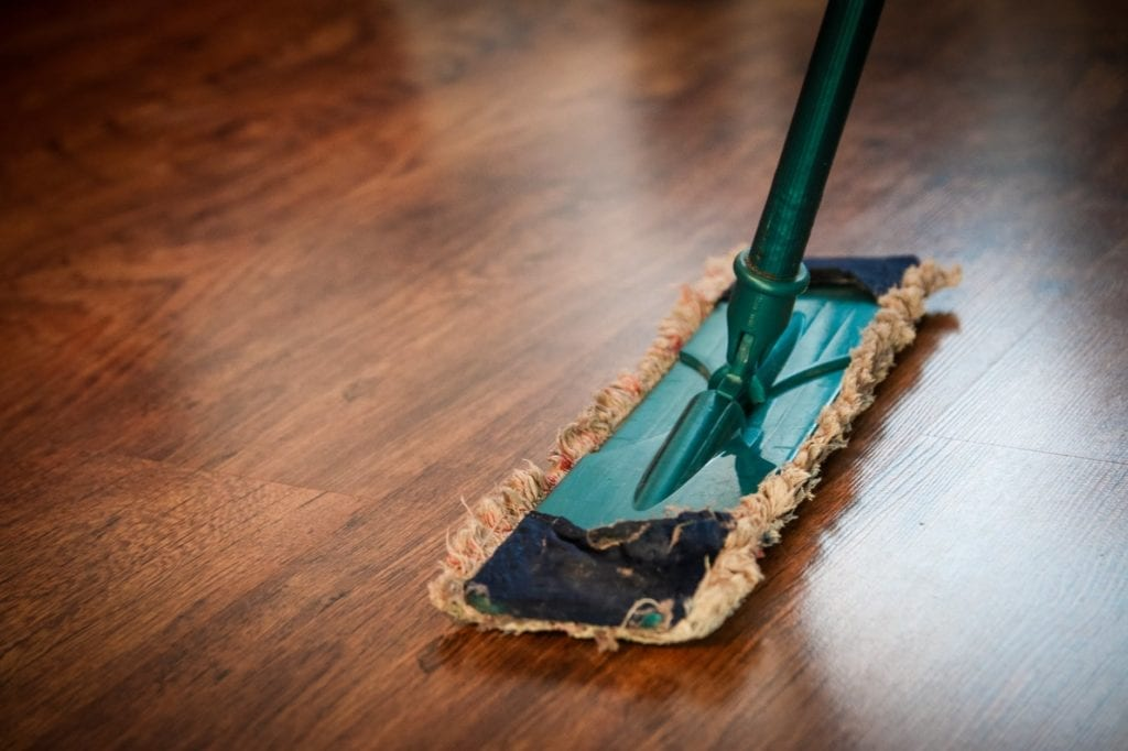 keeping you kitchen clean can help deter pests in indianapolis indiana