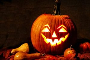 protect your pumpkins this fall with aaa exterminating