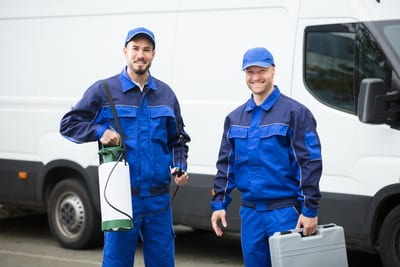 choose an expert extermination company in indianapolis indiana